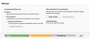 how to check download usage on ipad